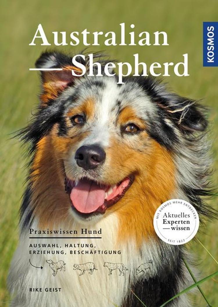 Australian Shepherd Buch Von Bei Weltbild Ch Bestellen