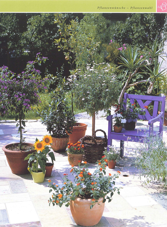 Blechschild Pflanzen Deko Blumen Lavendel Stiefmütterchen Metall Wand Schild