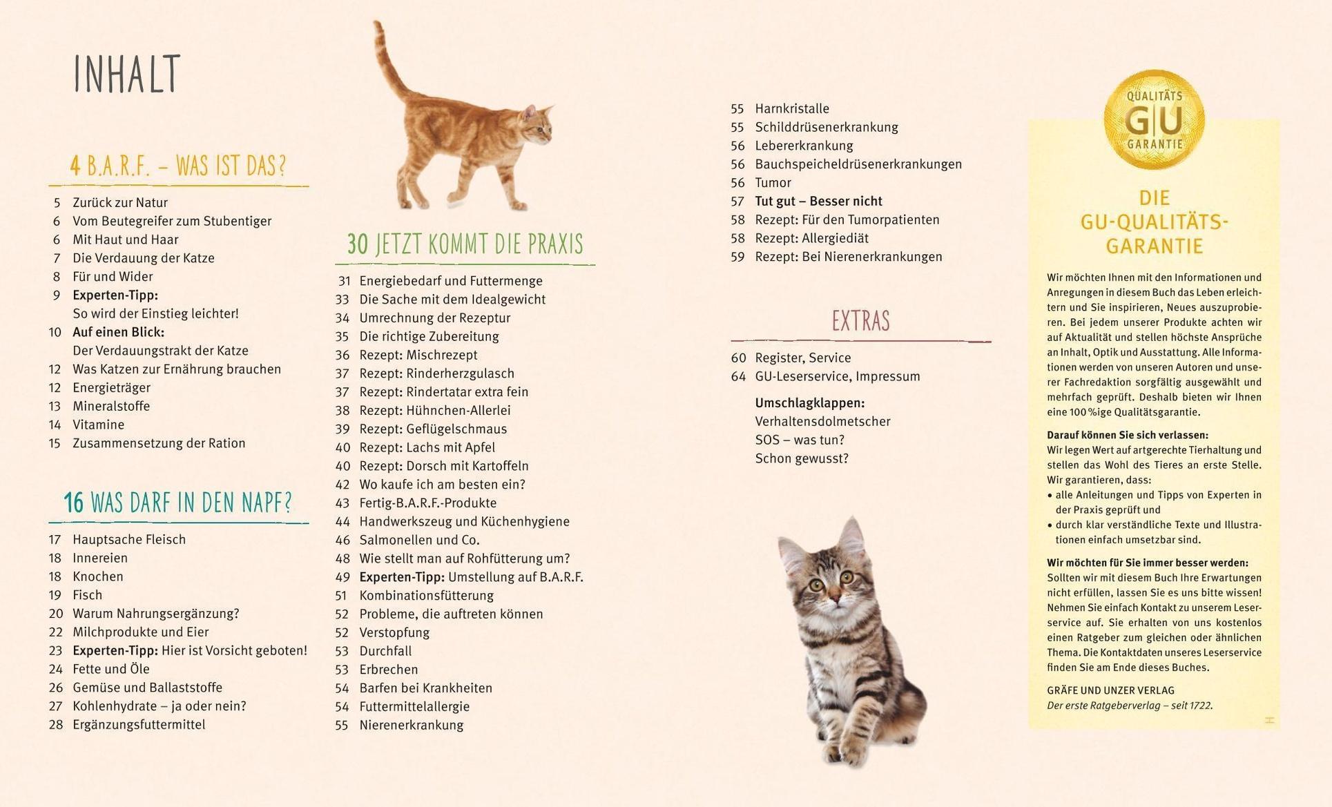 Spirulina für Gewichtsverlust Preis in Argentinien Katze