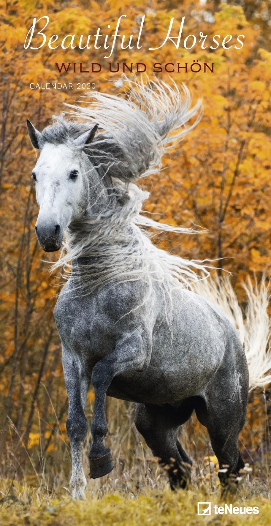 Stationery Horses 2020 Calendar and Diary Set Hardback Brand New