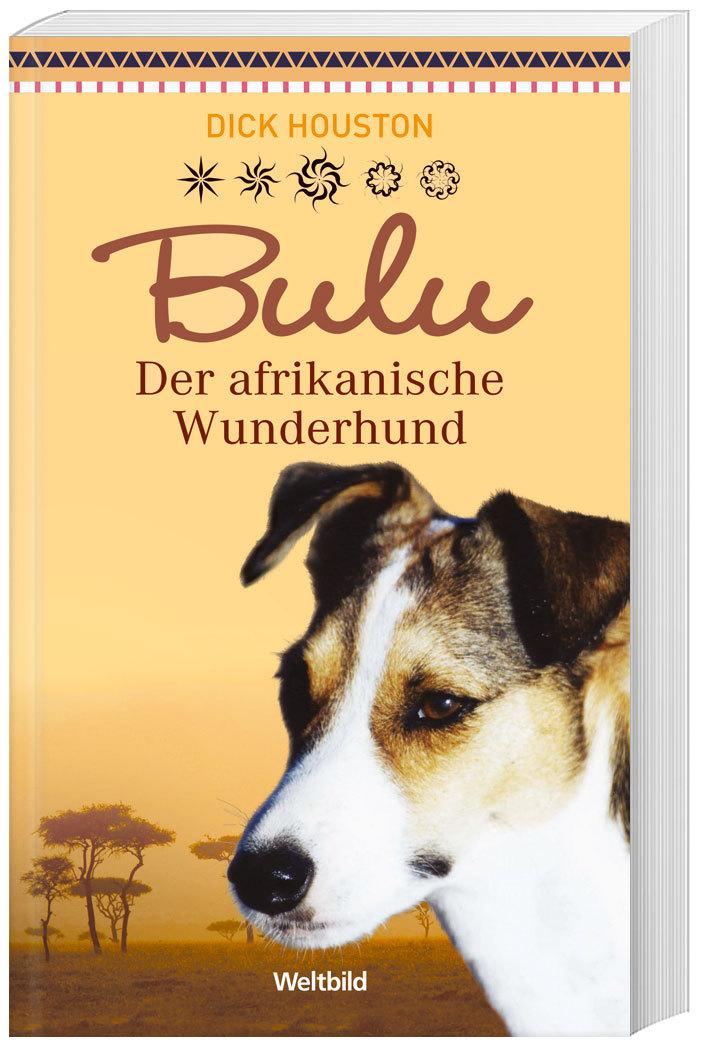 Bulu Der afrikanische Wunderhund