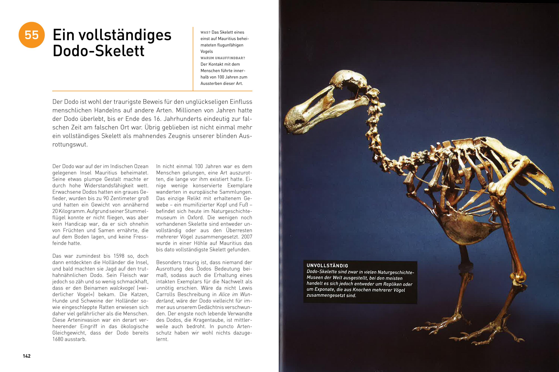 Großer Dodo Vogel Mauritius Holz Handarbeit Afrika