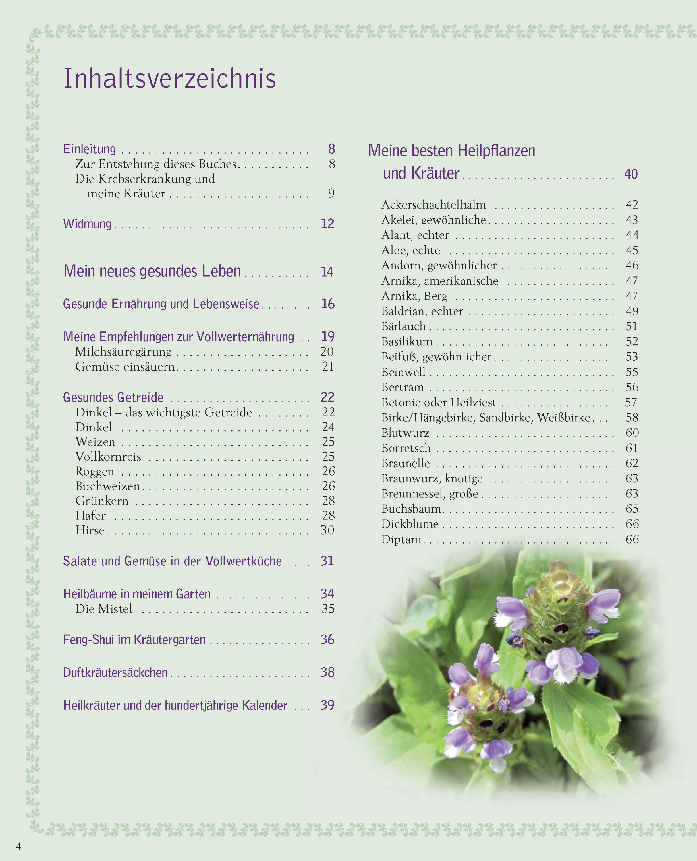 Heilpflanze Tb 13 Gewöhnlicher Baldrian