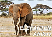 Elefanten Afrikas (Wandkalender 2020 DIN A3 quer) - Kalender - Jürgen Feuerer,