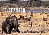 Elefanten - Die sanften Riesen Afrikas (Wandkalender 2021 DIN A3 quer) - Kalender - Markus Pavlowsky,