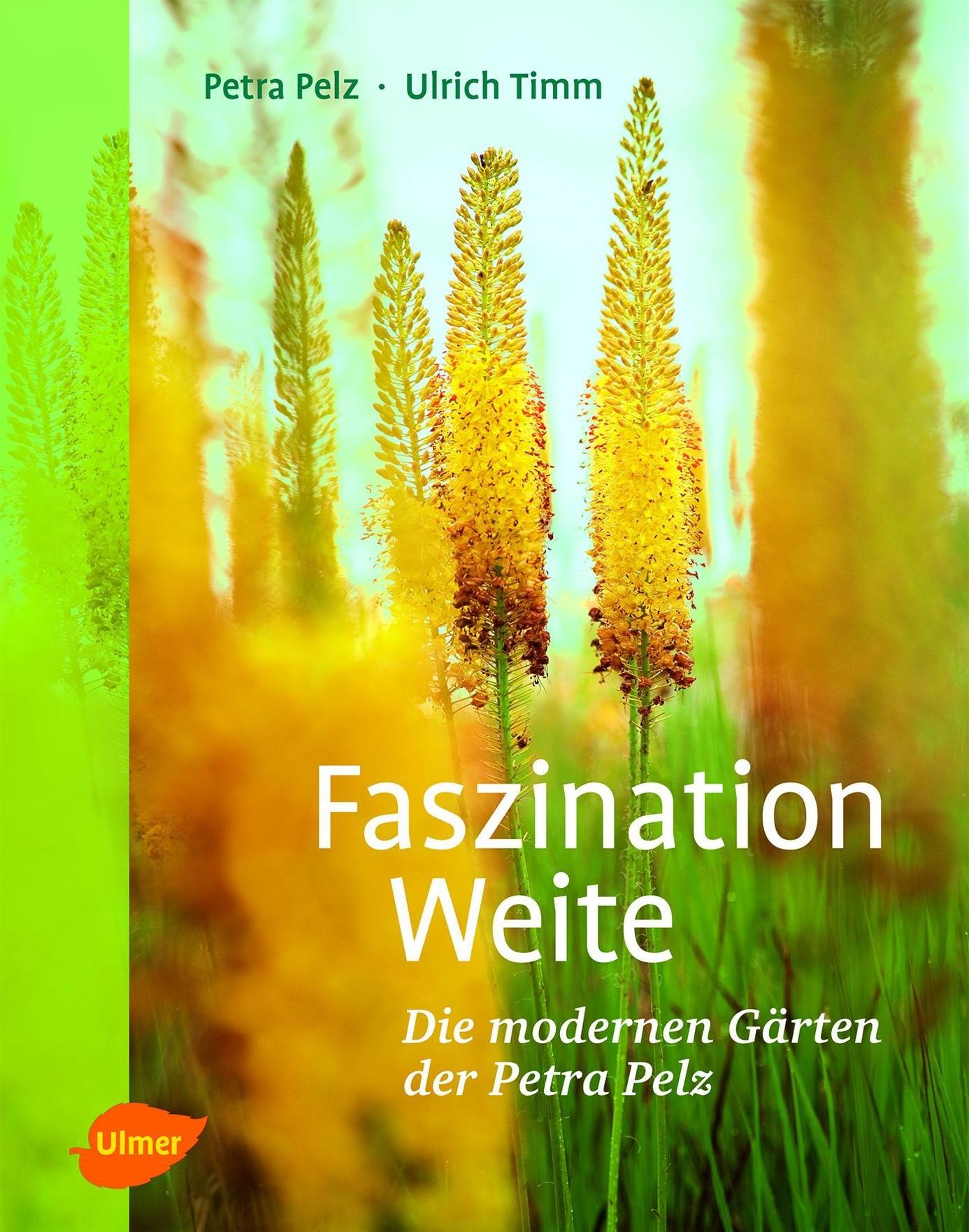 Faszination Weite Buch von Petra Pelz versandkostenfrei bei