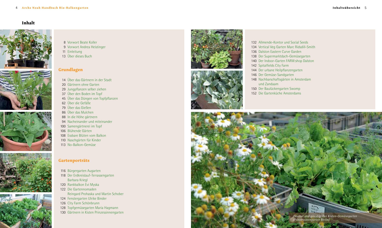 Lebkuchenbaum Stecklinge Pflanzen für dunkle Standorte mit geringem Lichtbedarf