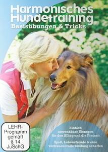 Image of Harmonisches Hundetraining