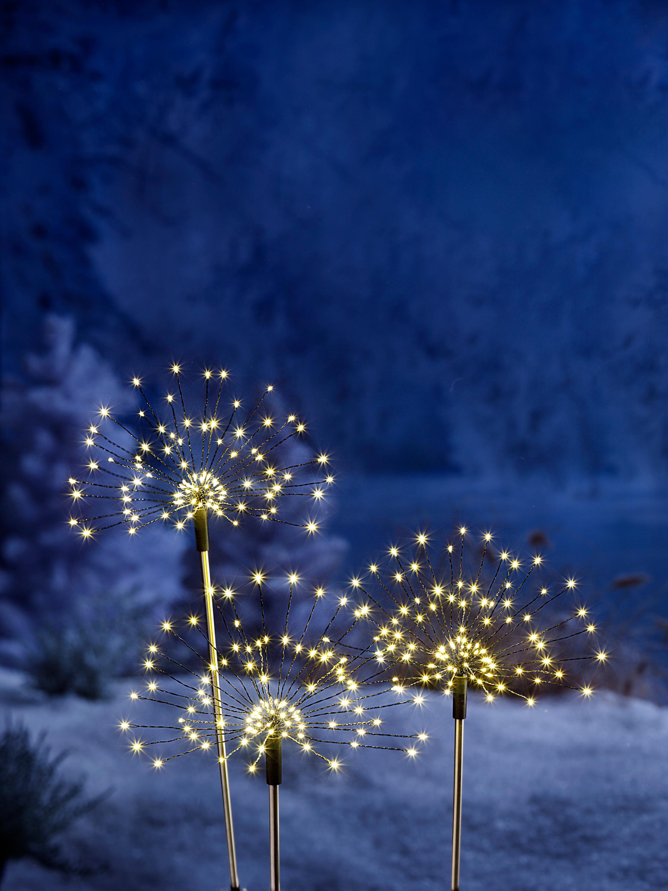Led Gartenstecker Magic 3er Set Bestellen Weltbild Ch