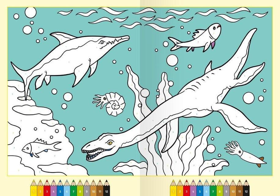 Malen Nach Zahlen Ab 5 Jahren Dinosaurier Buch Jetzt Online Bei Weltbild De Bestellen