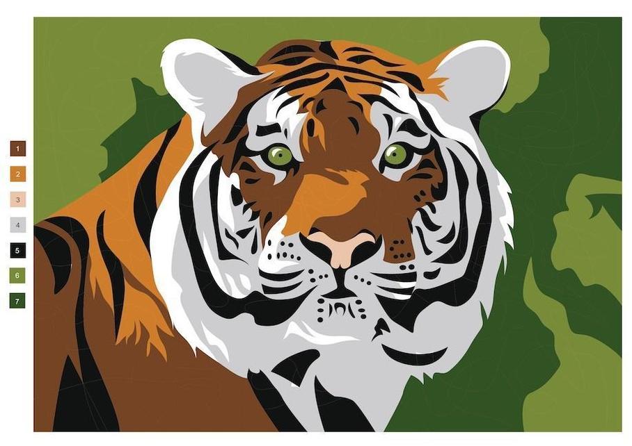 malen nach zahlen  faszinierende tiere buch jetzt online