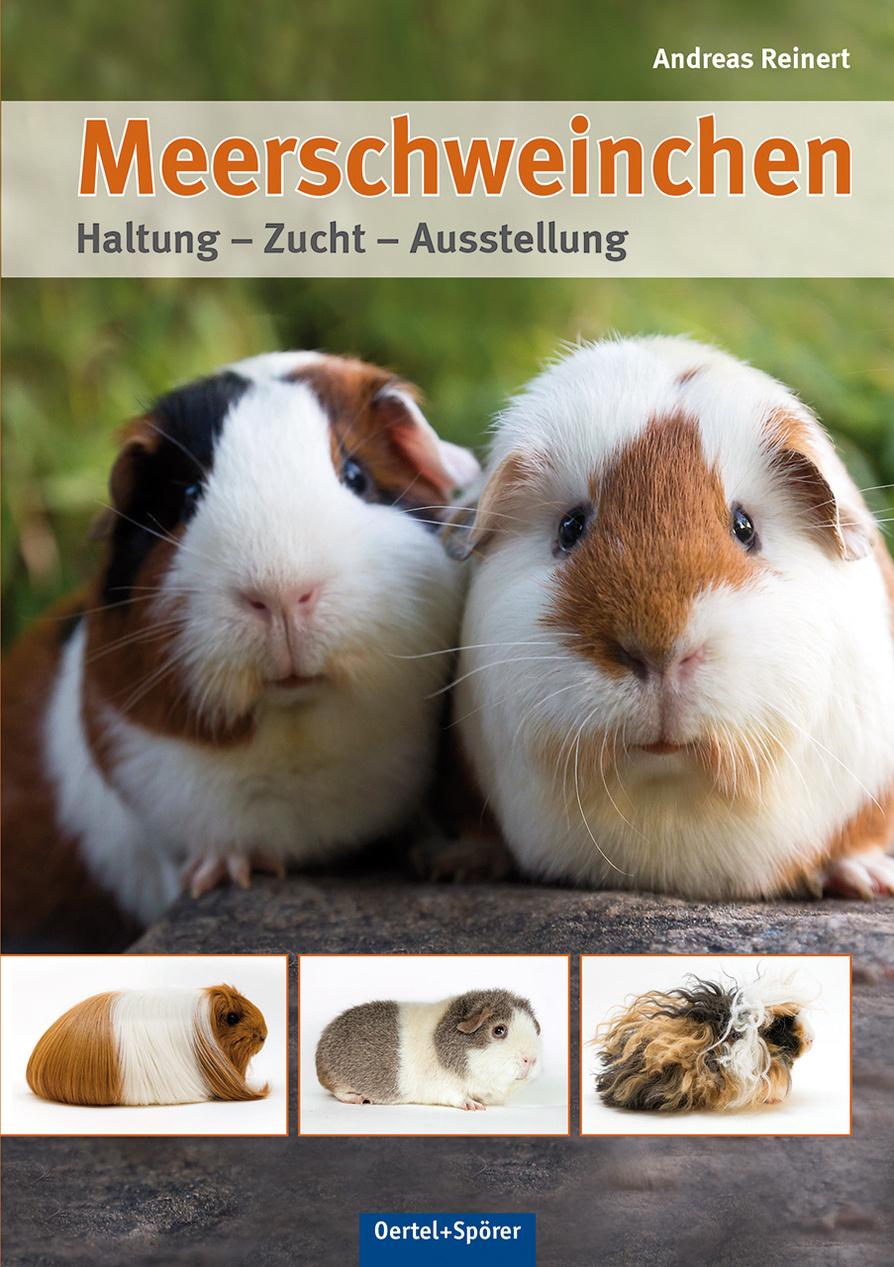 Meerschweinchen Buch Von Versandkostenfrei Weltbild De