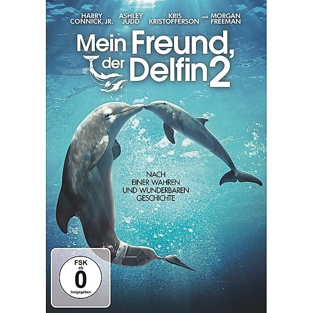 Mein Freund Der Delfin 2 Dvd Bei Weltbild At Bestellen