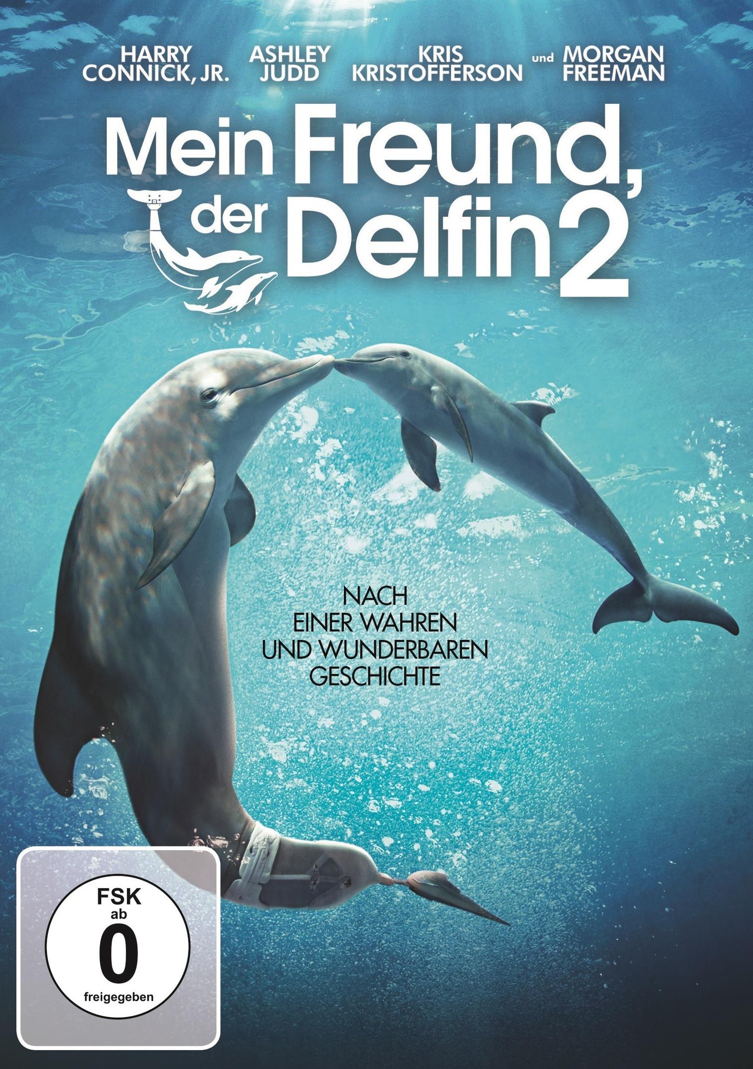 Mein Freund Der Delfin 2 Dvd Bei Weltbild Ch Bestellen