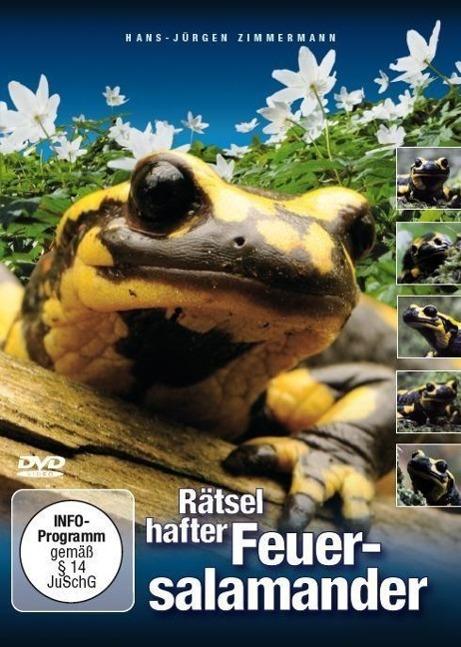 Image of Rätselhafter Feuersalamander, 1 DVD