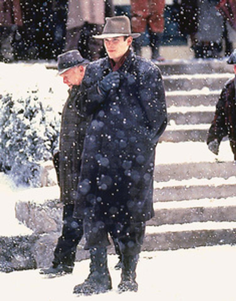 Schnee Der Auf Zedern Fällt