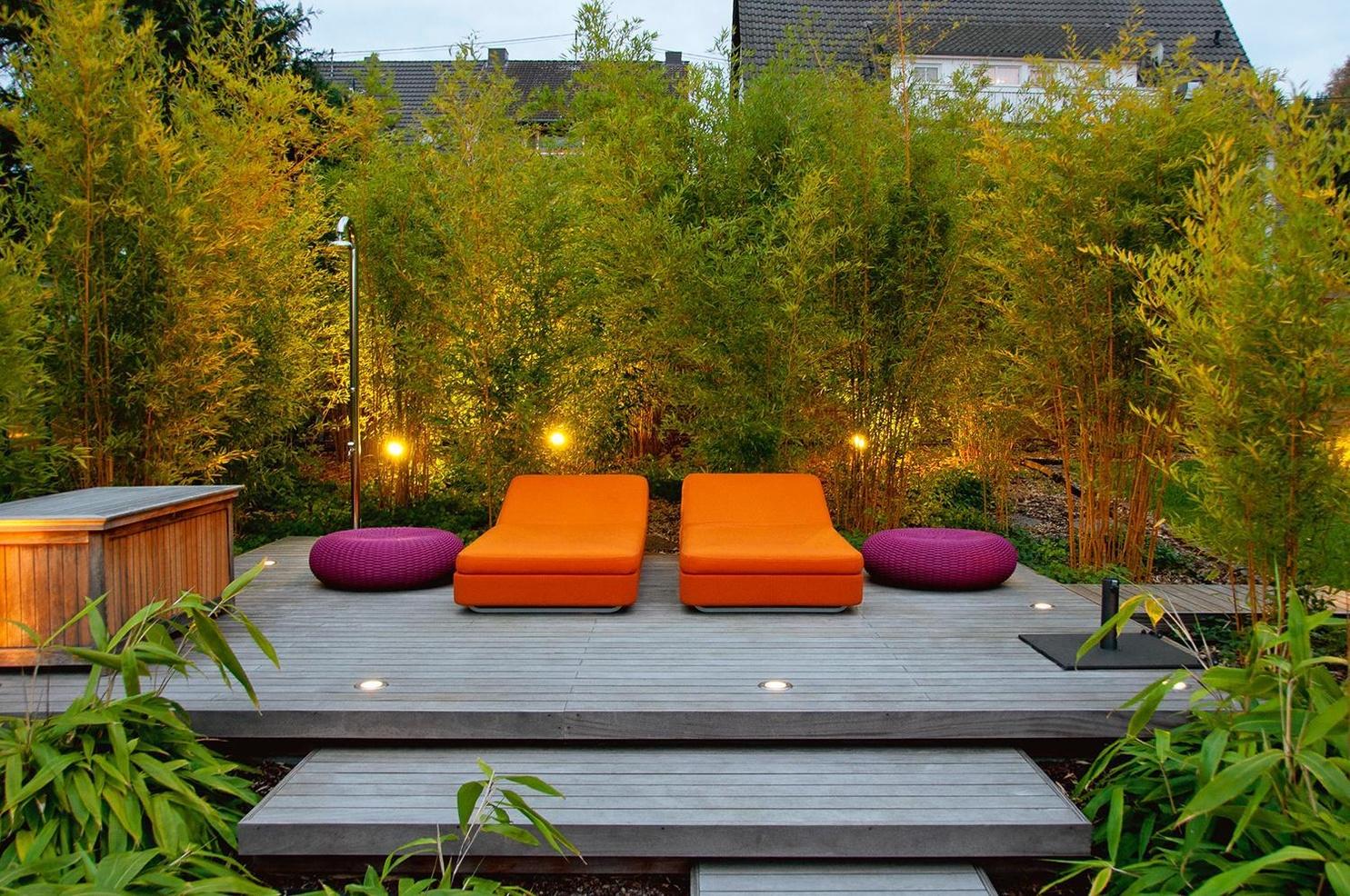 Sichtschutz Im Garten Buch Von Manuel Sauer Versandkostenfrei