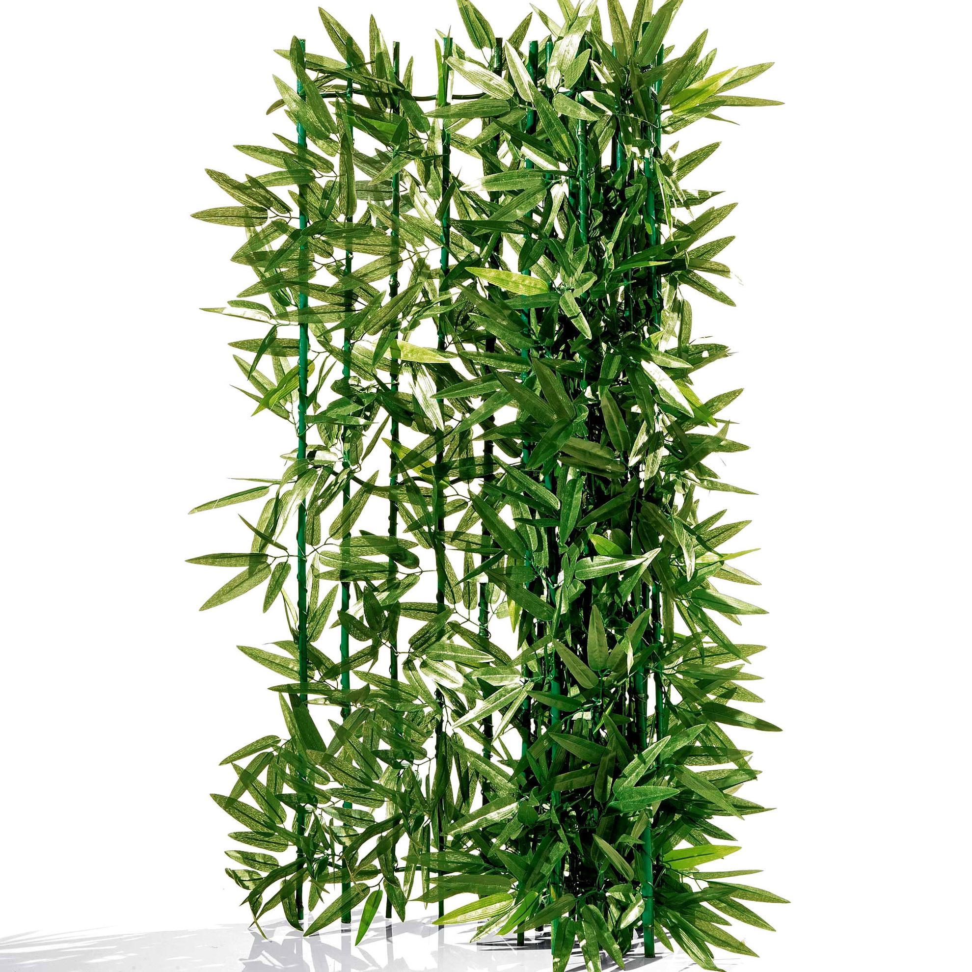 Sichtschutzhecke Bambus Jetzt Bei Weltbild De Bestellen