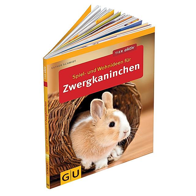 Spiel Und Wohnideen Fur Zwergkaninchen Buch Weltbild Ch