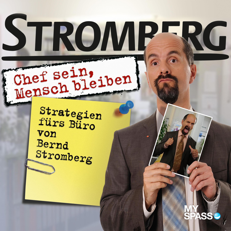 Stromberg Chef Sein Mensch Bleiben Horbuch Download