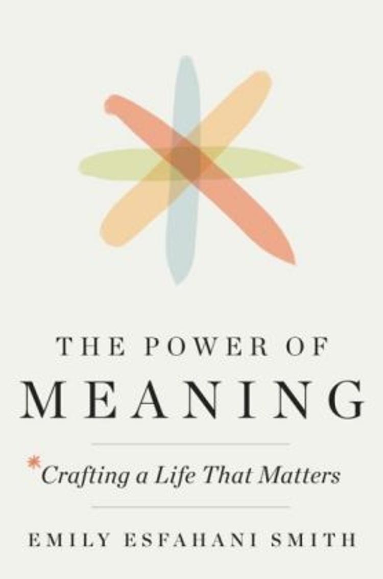 The Power of Meaning Buch versandkostenfrei bei Weltbild.de bestellen