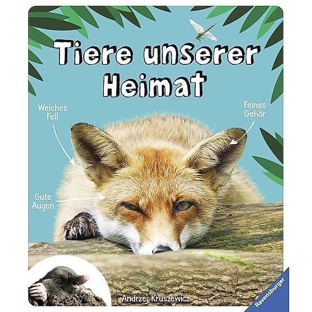 Tiere Unserer Heimat Buch Versandkostenfrei Bei Weltbild De Bestellen