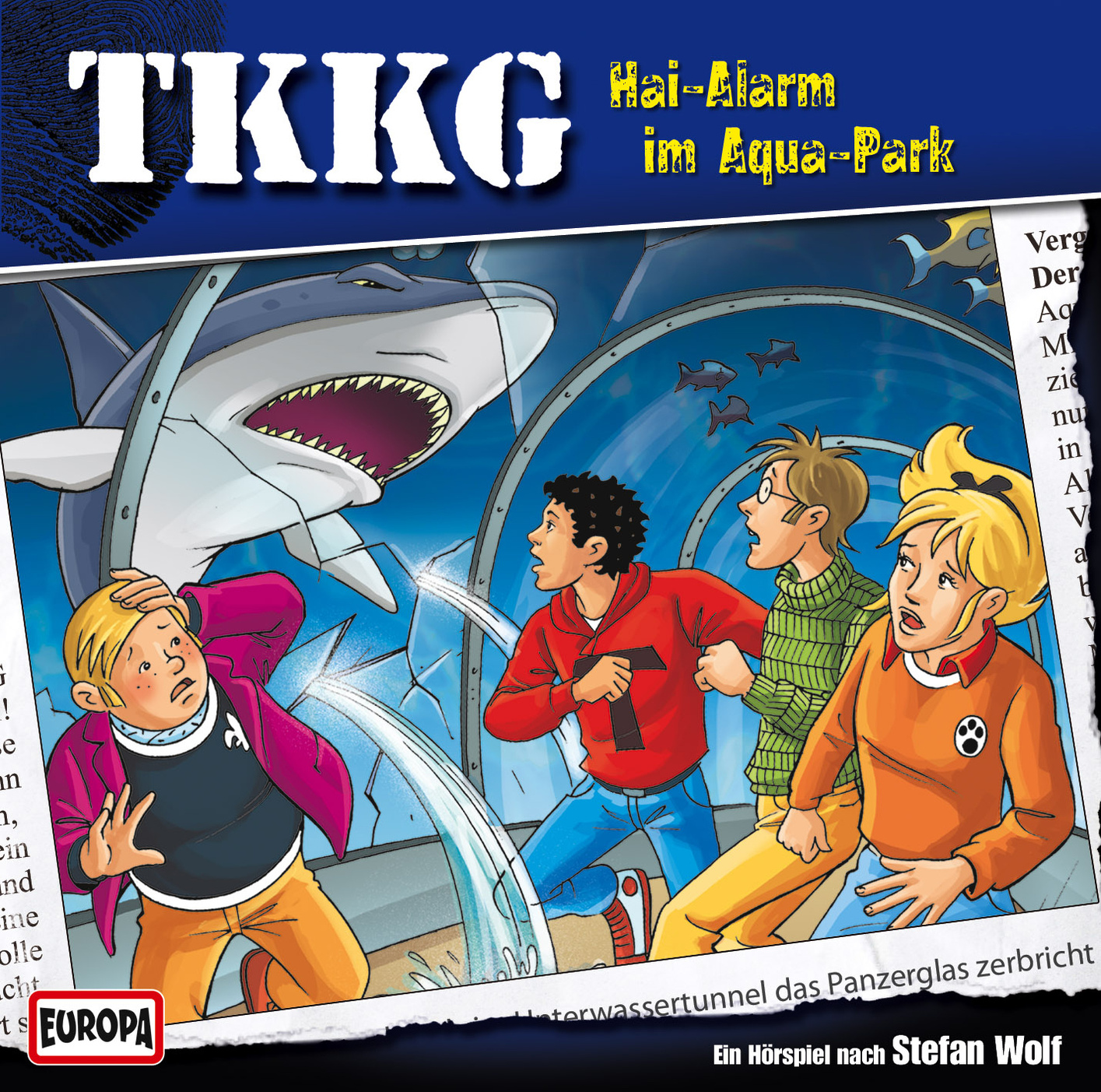 Tkkg Bande
