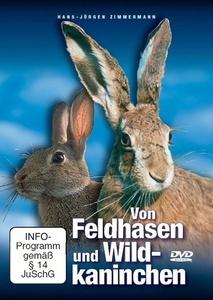 Image of Von Feldhasen und Wildkaninchen