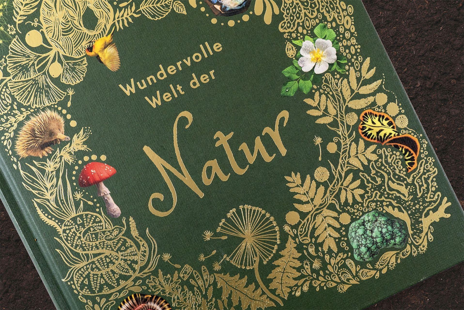 Wundervolle Welt Der Natur Buch Von Ben Hoare Versandkostenfrei Bestellen