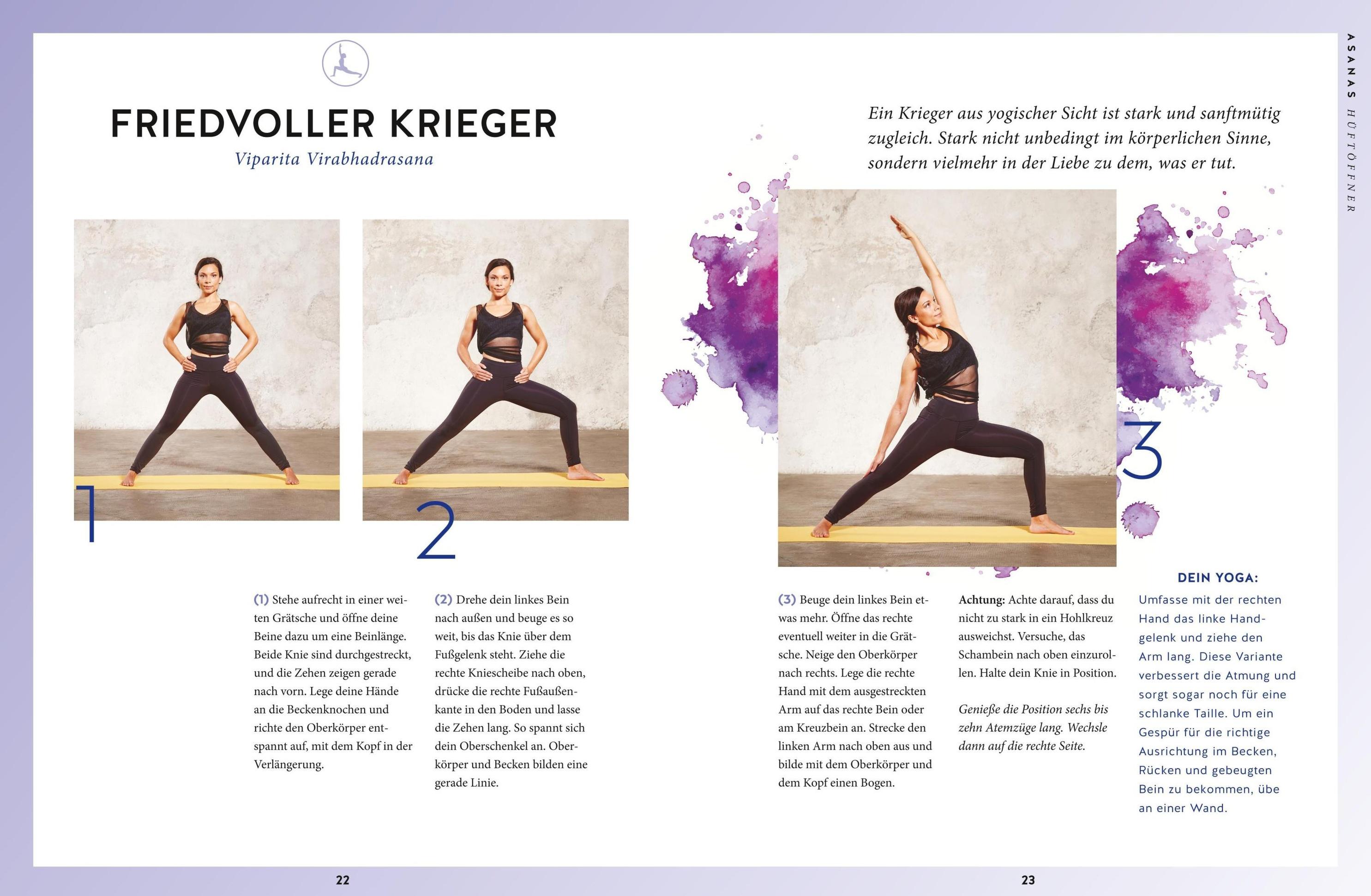 Yoga Basics M Dvd Buch Von Amiena Zylla Versandkostenfrei Weltbild At