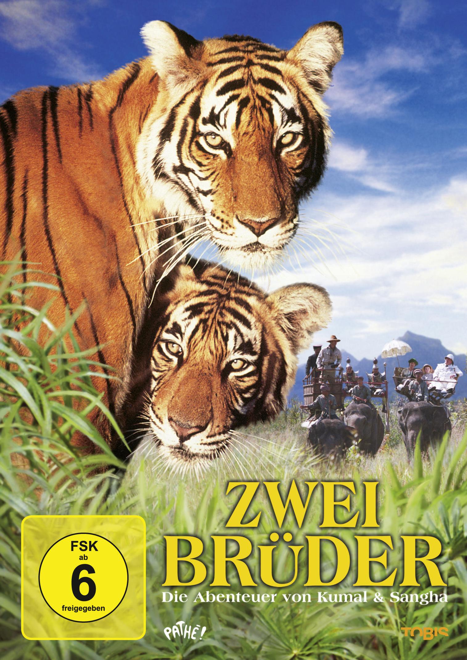 Die östliche Tigerin vor und nach dem Abnehmen