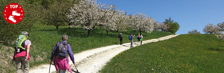 Wanderweg von Hochwald via Nuglar nach Liestal