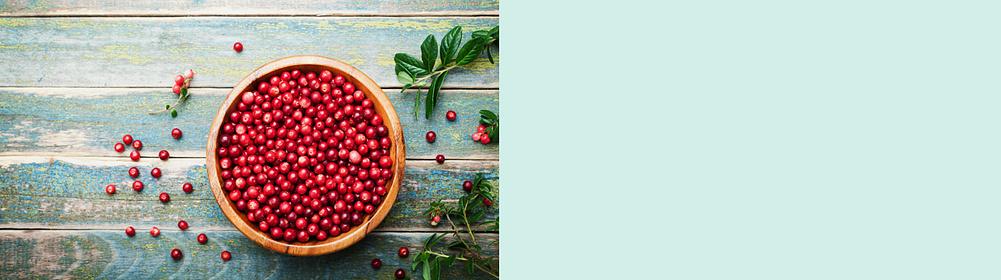 """Cranberry: Reich an sekundären Pflanzenstoffen! Welche Bestandteile hat die Cranberry? Welche Wirkungen hat Cranberry im Körper?   [{{ button href=""""#ernaehrung-vitamine-wirkstoffe-cranberry-id12GY8-layout_right_V4A06-layout_HT241"""" text=""""Mehr zum Thema"""" class=""""tertiary"""" background: #fff; color: #000 }}](#ernaehrung-vitamine-wirkstoffe-cranberry-id12GY8-layout_right_V4A06-layout_HT241)"""