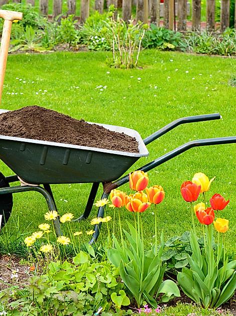 Diese Arbeiten fallen im April im Garten an