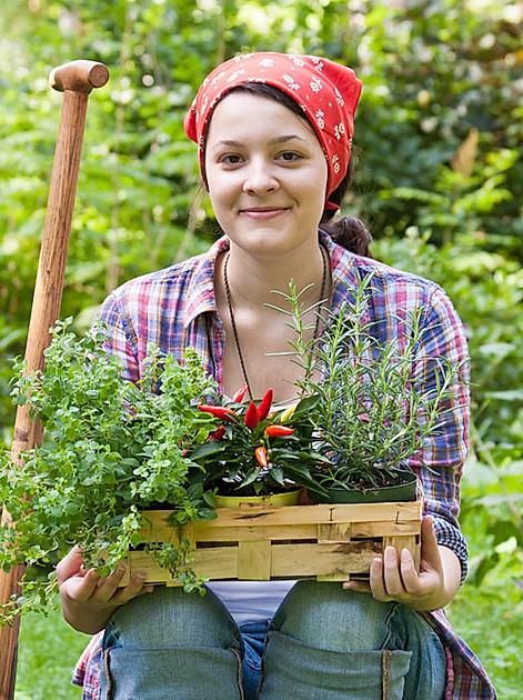 Jetzt ist Hochsaison: Zeit, Gemüse und Blumen auszupflanzen. Doch Vorsicht, die Eisheiligen