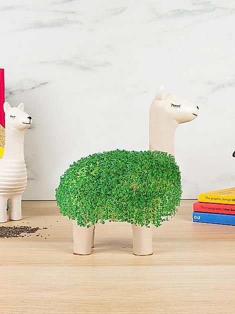 Keramik-Lama und Chia-Samen
