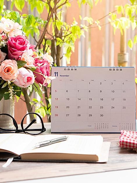 Gut geplant blüht besser: Was ein Gartenkalender alles kann