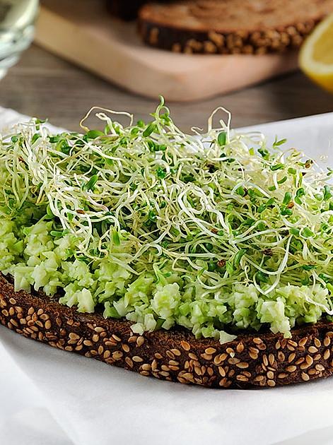 Frische Vitamine und Ballaststoffe aufs Brot packen - Sprossen krönen jeden pikanten Aufstrich.