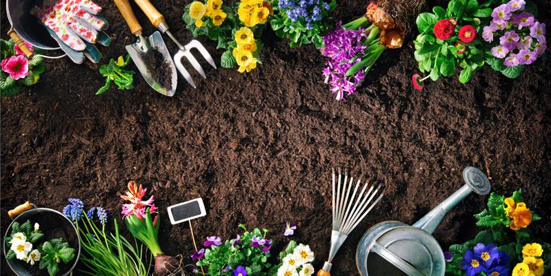 Gartenpraktisch