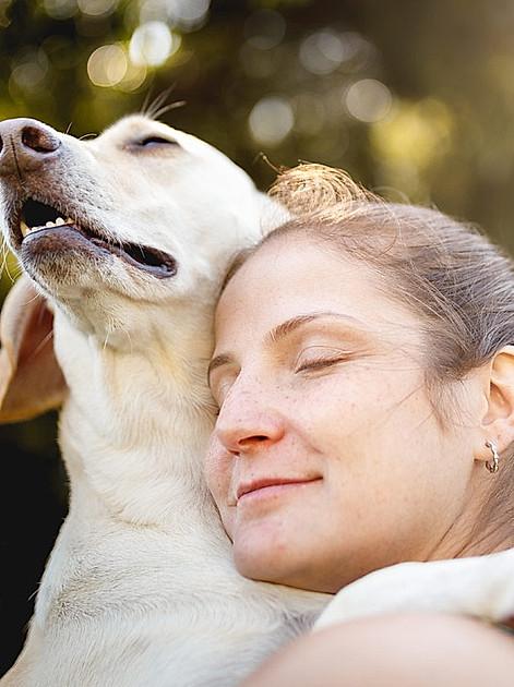 Wie Hunde uns in vielen Nöten helfen