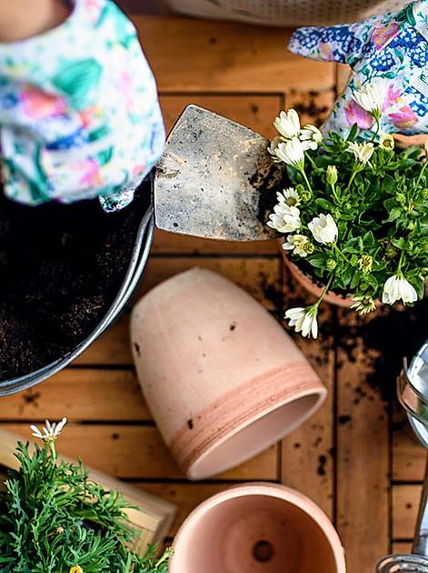 Grüne Wohlfühloase gestalten, auch ohne Garten!