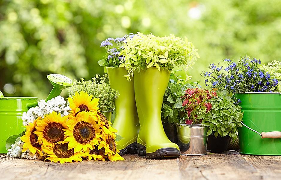 Blumen, Gießkanne und Gummistiefel stehen im Garten auf einem Tisch