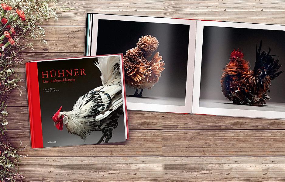 Bildband Hühner von teNeues