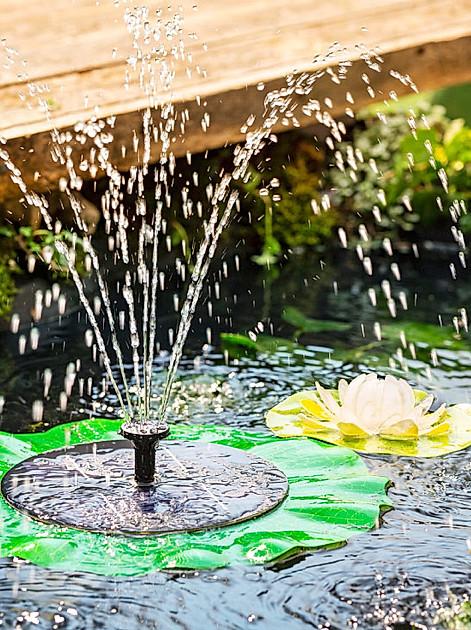 Teich anlegen: ein Solarwasserspiel bringt Leben in den Garten