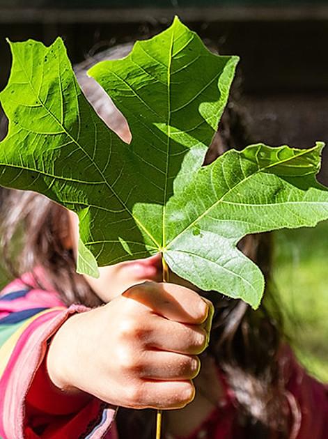 Kindern den Umweltschutz erklären