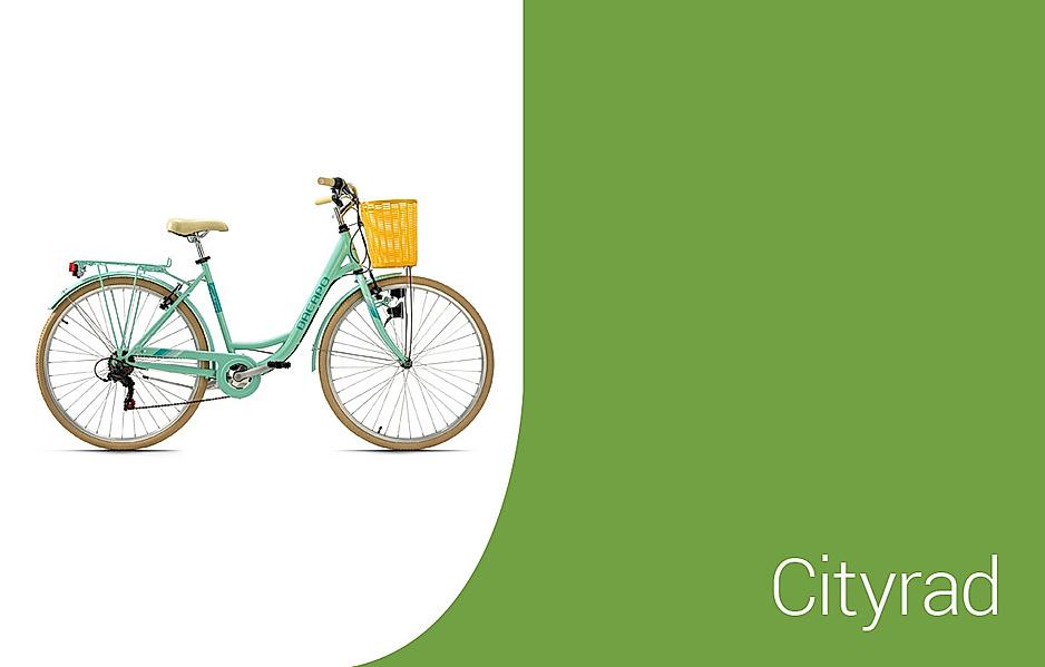 Auswahl an Citybikes
