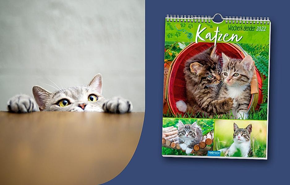 Große Auswahl an Kalendern zum Thema Natur & Tiere