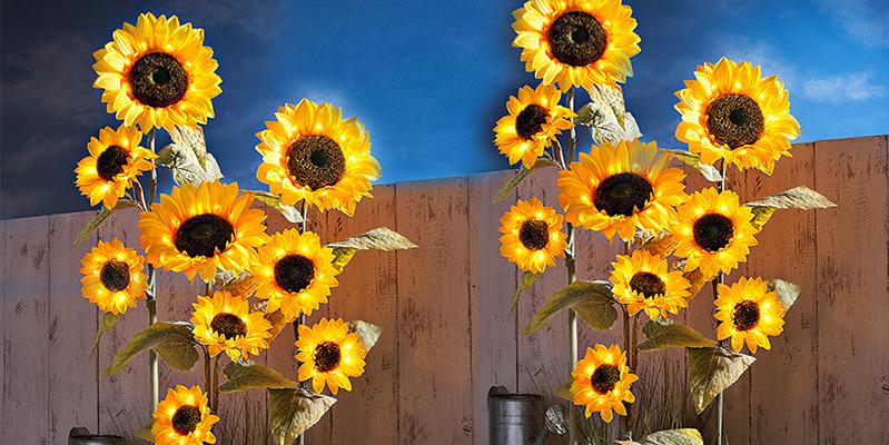 Bezaubernde Deko für Garten, Balkon & Terrasse