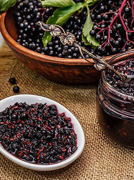 Holunder-Marmelade selber machen