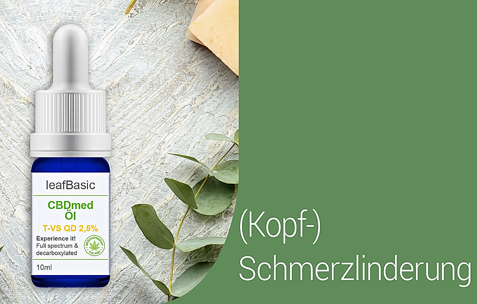 leafBasic CBD med Öl T-VS QD 2,5% Medizinprodukt von leafPharma (T-VS QD: 2,5%)